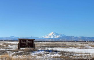 Mt Shasta from White Lake