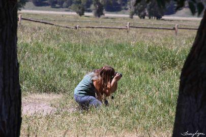 Shooting the Barns