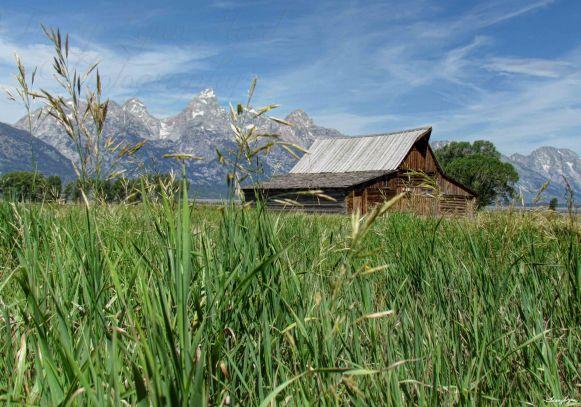 T A Moulton Barn