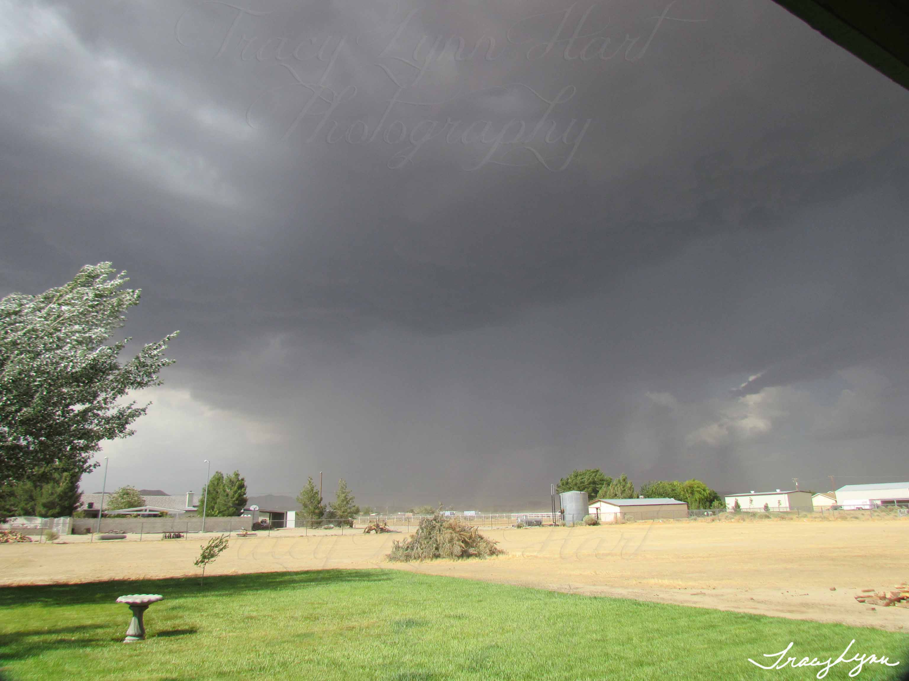 Rosamond Storm from East