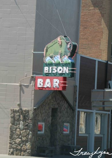 Bison Bar MT