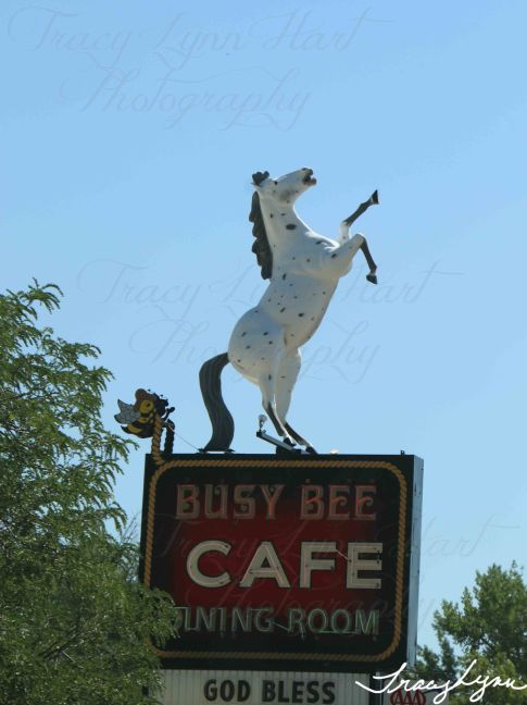 Busy Bee Cafe Montana