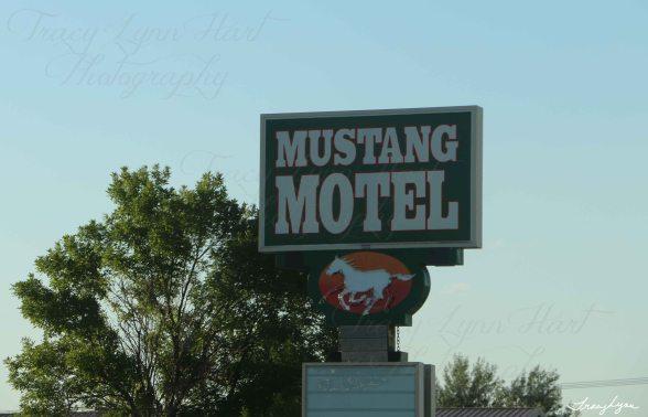 Mustang Motel Montana